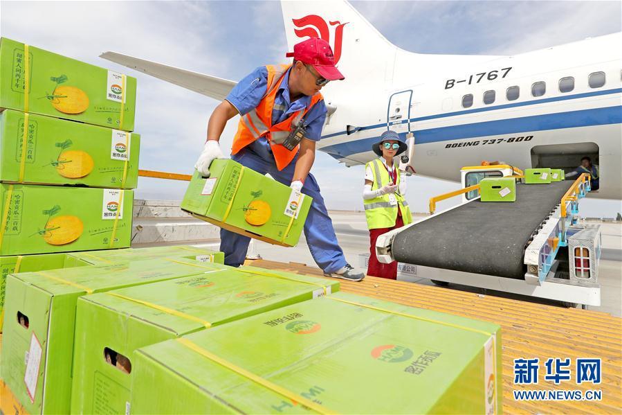 7月7日,新疆哈密机场工作人员向飞机货仓搬运哈密瓜.