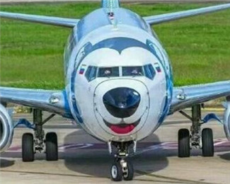 俄罗斯一航空公司将飞机涂成哈士奇