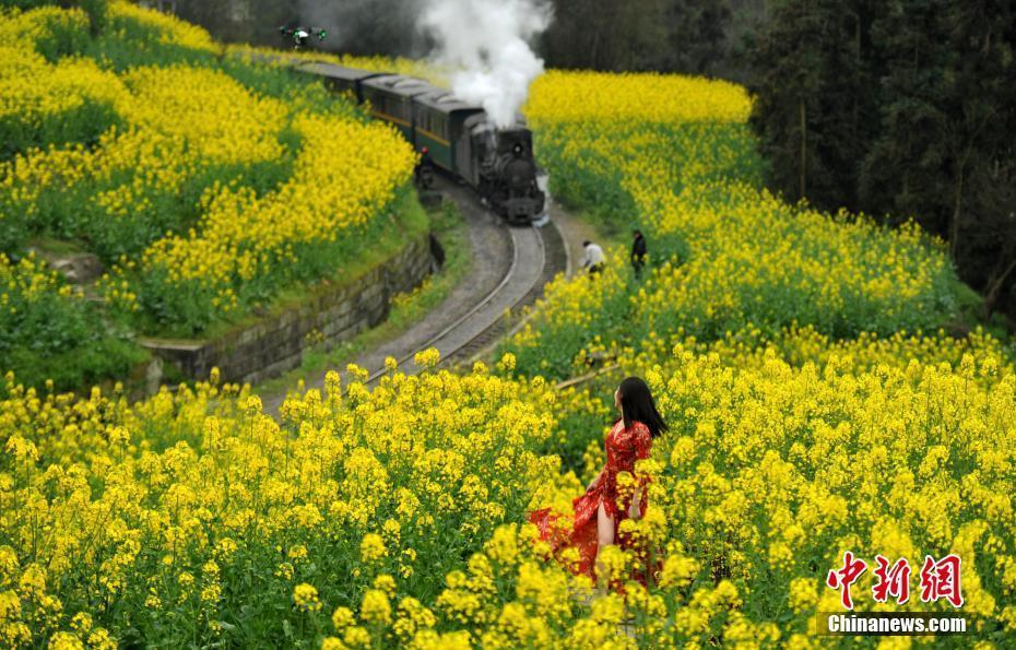 迎接中共十九大 保护自然环境共建美丽中国