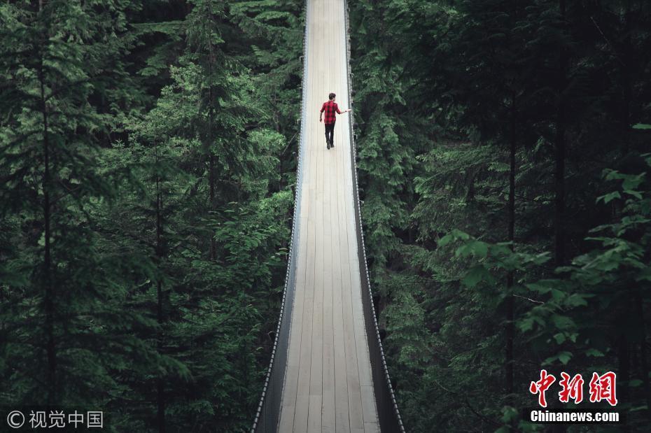 """体验高空刺激 加拿大""""惊悚吊桥""""悬挂高空森林环绕"""