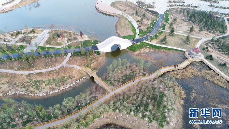 (环境)(3)河北邯郸:采煤塌陷地变生态公园