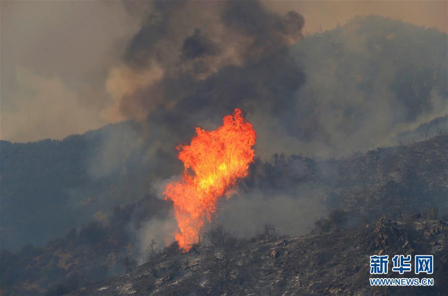 美国南部主要哹n_美国加利福尼亚州南部靠近洛杉矶的3处主要山火灾情7日夜间得到初步