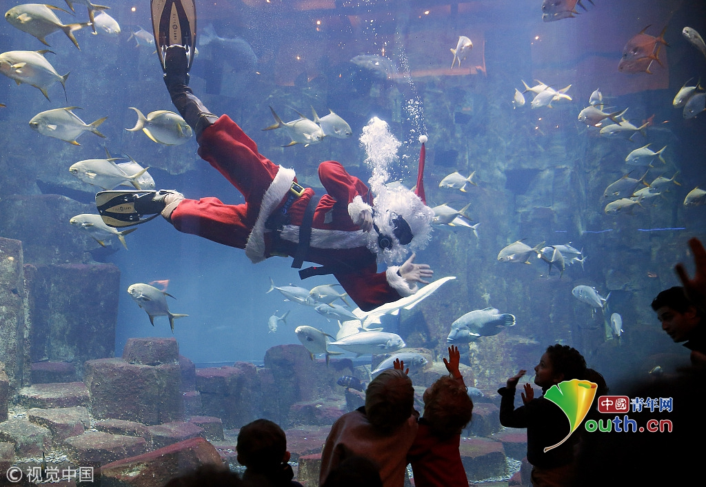 壁纸 海底 海底世界 海洋馆 水族馆 1024_706
