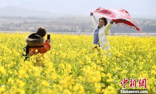 江西新余万亩油菜花次第绽放游客采撷春光