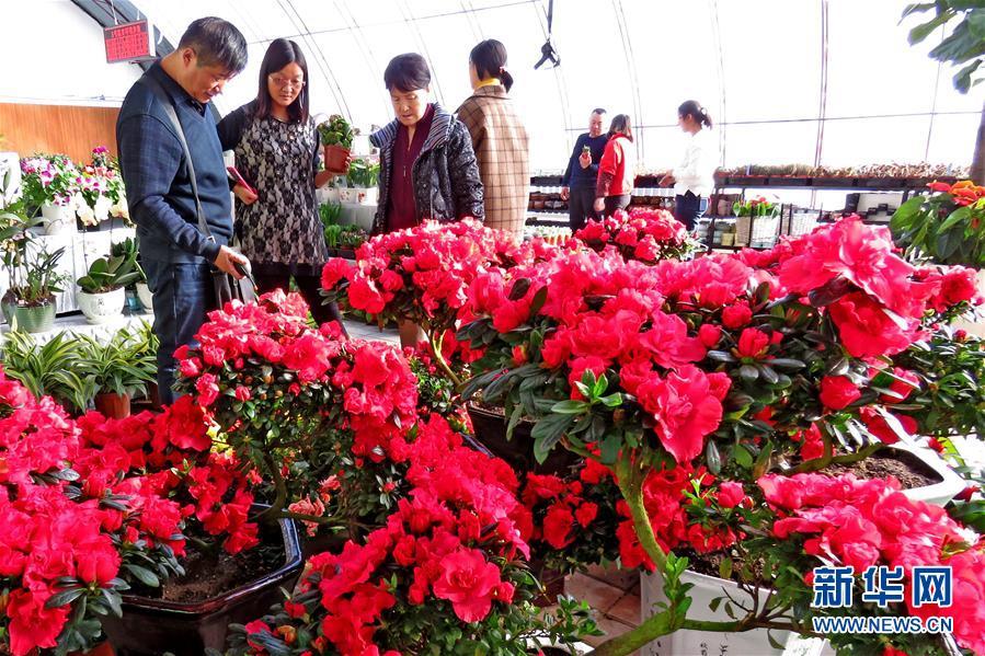 #(社会)(4)新疆哈密:农业园里春意浓