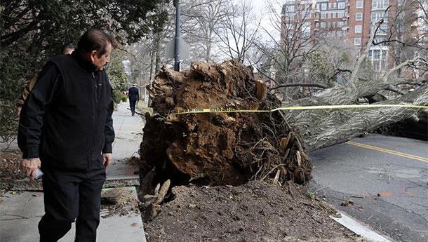 华盛顿遭遇风暴极端天气.jpg
