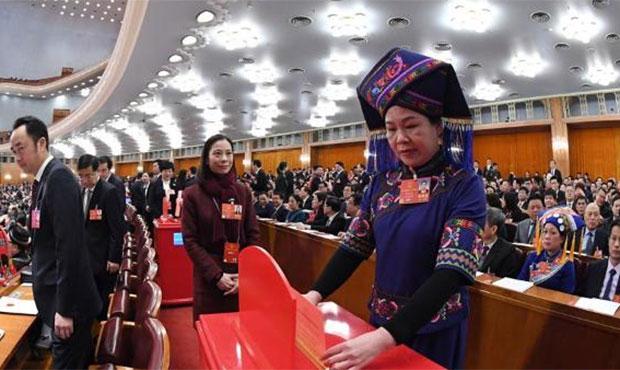 代表投票表决宪法修正案草案.jpg