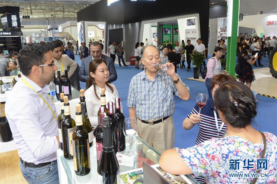(经济)(2)第六届中国-亚欧博览会在乌鲁木齐开幕