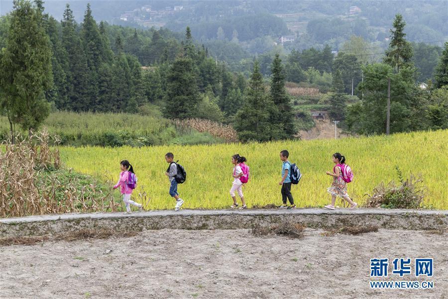9月6日,重庆市南川区大有镇水源村侨心小学学生在上学路上.