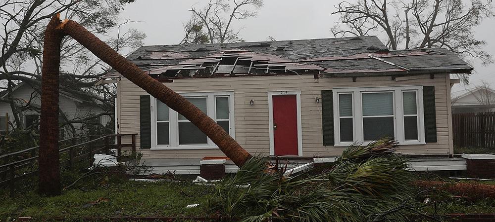 """飓风""""迈克尔""""登陆美国佛州-屋顶被吹飞树木被拔起.jpg"""