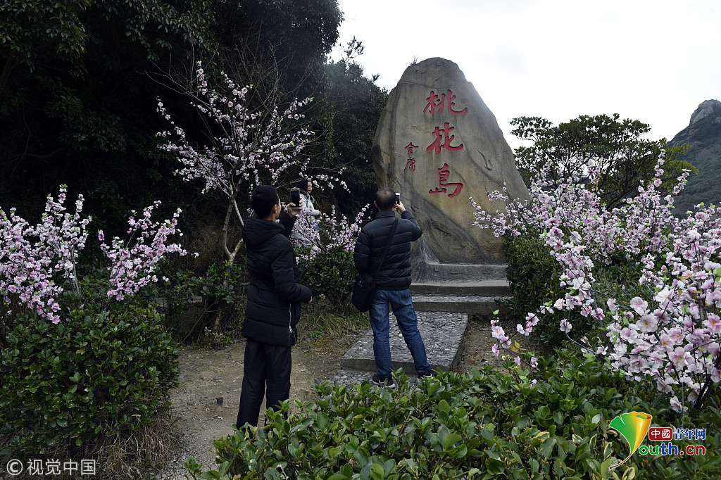 2017年02月11日,浙江舟山,桃花岛.图片