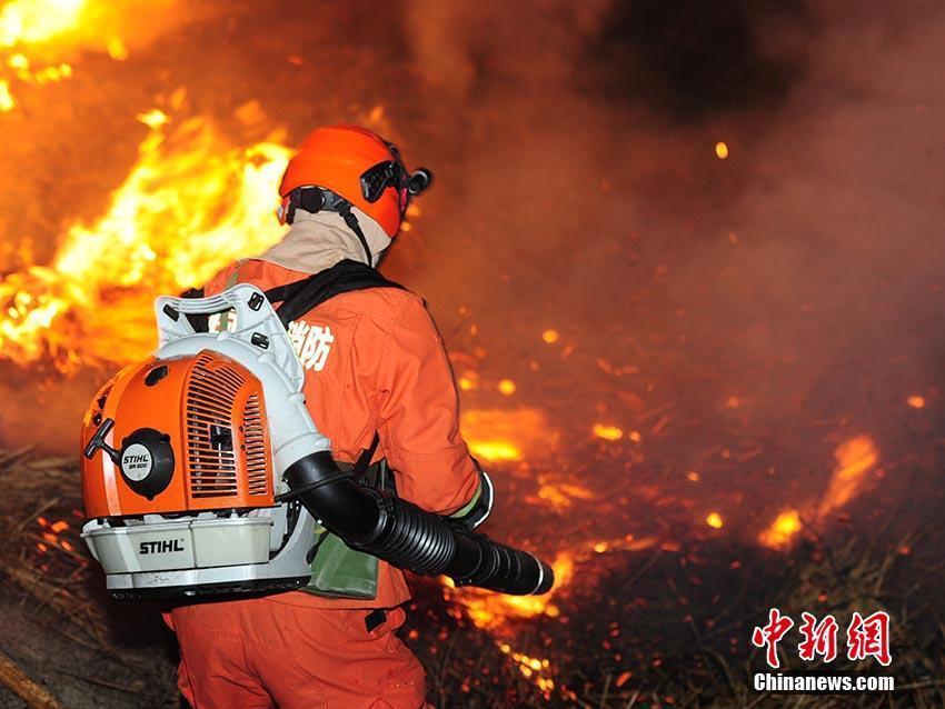 森林消防员正在进行火演练前期准备. 刘栋 摄图片
