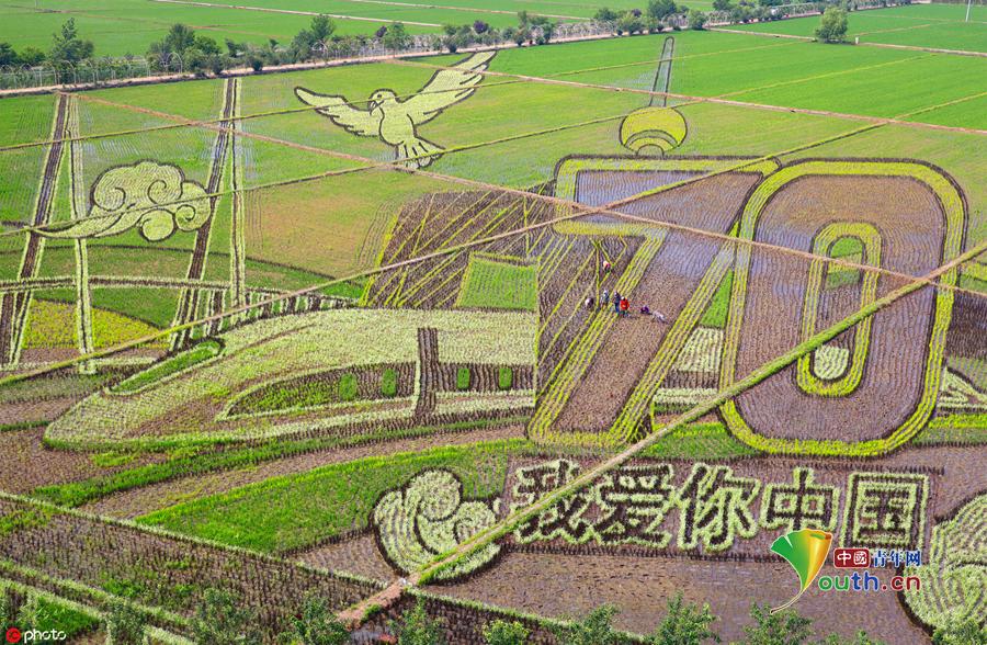 图话70年:全国人民花式表白 祝福新中国成立70周年