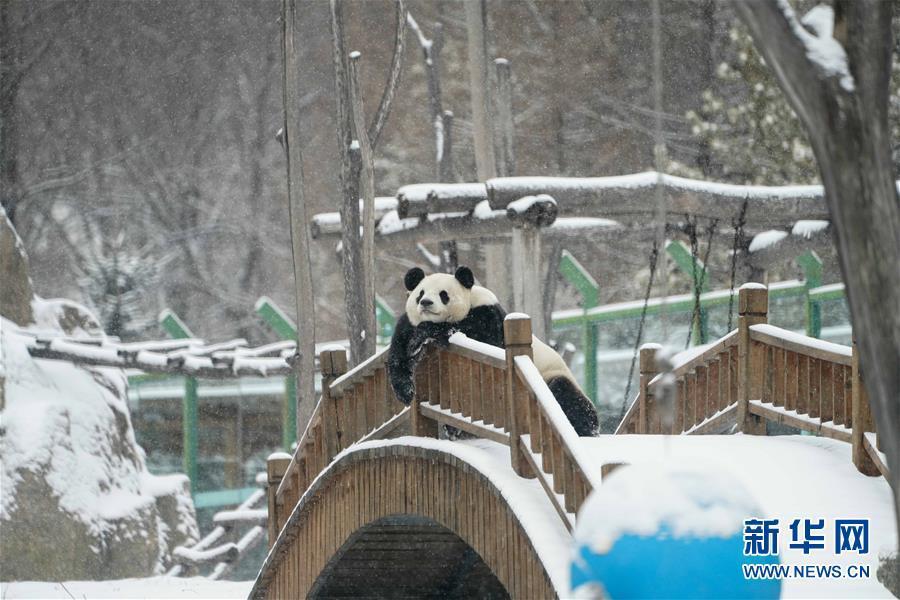 http://www.k2summit.cn/lvyouxiuxian/1401849.html