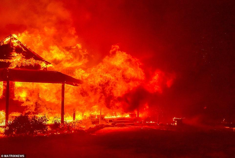 澳大利亚山火肆虐,火势之大仿佛末日降临。(图源:每日邮报)