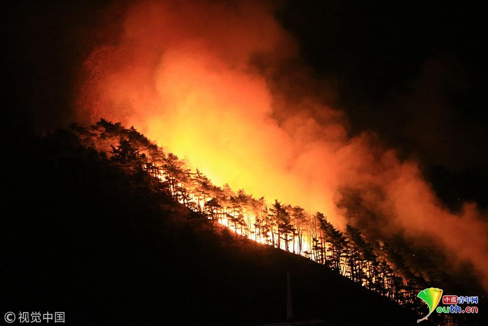 韩国江原襄阳遭山火侵袭 大火映红天际